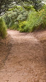 Sandy path Royalty Free Stock Images
