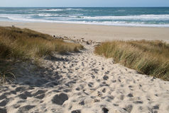 Sandy path to the beach. Royalty Free Stock Photo
