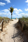 Sandy Path to Beach Stock Photos