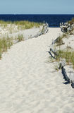 Sandy Path to Beach. The ocean is a deep clue.  The sky is blue and cloudless Royalty Free Stock Images