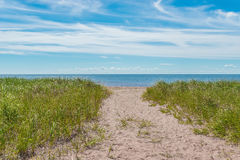 Sandy path to the beach Royalty Free Stock Photo