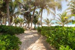 Sandy path to a caribbean beach, Tulum, Mexico. Sandy path to a caribbean beach with turquoise waters and palms, Tulum, Mexico Stock Photos