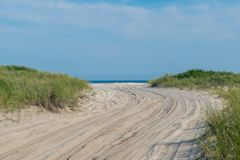 Sandy path toward the beach, with lush green grass on both sides, Fire Island, NY royalty free stock photography