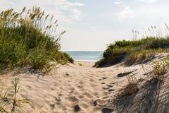 Sandy Pathway à praia de Coquina em resmunga a cabeça, North Carolina fotos de stock royalty free