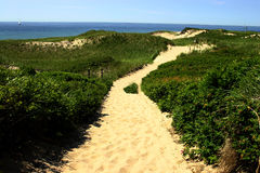 Sandy Pathway. To Dunes at North Point Block Island, RI Royalty Free Stock Photo