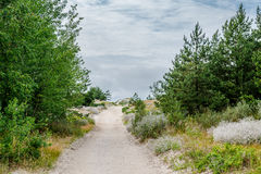 Sandy pathway to the Baltic Sea. Stock Photos
