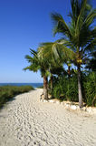 Sandy pathway to the beach Royalty Free Stock Photos