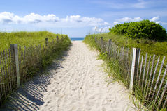 Sandy pathway to beach. Sandy pathway between grass receding to sea under blue sky and cloudscape Stock Photography