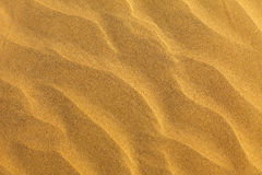 Sandy pattern Royalty Free Stock Photos