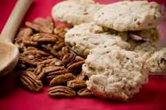 Sandy Pecans photos stock