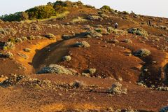 Sandy pustyni krajobraz w zmierzchu z w?drowami w plecy zdjęcie stock