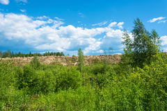 Sandy ridge on a background of green forest and cloudy sky. Royalty Free Stock Images