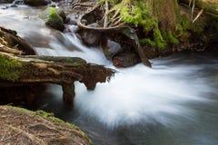 Sandy River below Ramona Falls Royalty Free Stock Photos