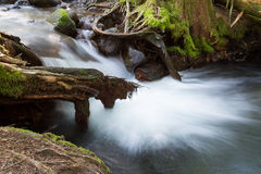 Sandy River unter Ramona Falls Lizenzfreie Stockfotos