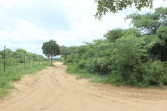 Sandy road in the African Bushveld Royalty Free Stock Image