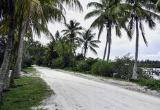 Sandy road at a florida waterway in the backcountry stock photo