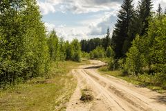 Sandy road in the forest area Royalty Free Stock Photography