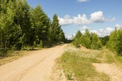 Sandy road in the forest area Royalty Free Stock Photo