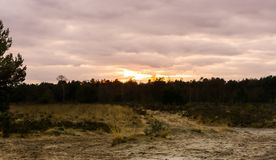 Sandy road in a heather landscape during sunset, a colorful effect in the sky and clouds stock photo