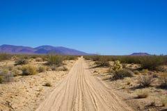 Sandy Road i Mojaveöknen Royaltyfri Fotografi