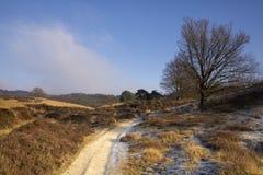 Sandy road near the Posbank Royalty Free Stock Photo