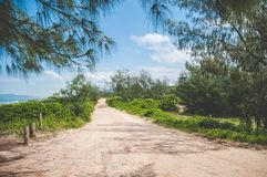 Sandy Road Beside the Ocean in Florianopolis, Brazil. Empty, sandy road amidst trees and green bushes on a sunny day beside the ocean in Florianopolis, Brazil royalty free stock photo