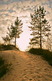 Sandy road in paradise. The Karelian landscape Royalty Free Stock Photo