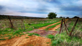 Sandy road on a pasture Stock Photography