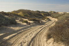 Sandy Road and tire tracks Stock Photography