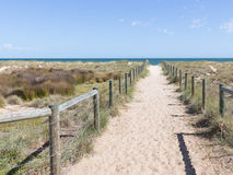 Sandy road to the sea, Australia Royalty Free Stock Photo