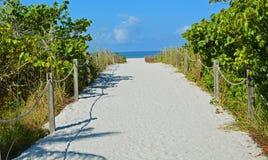Sandy Roped Path aan een Blauwe Overzees op het Strand stock foto's