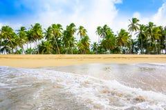 Sandy sea beach Stock Images