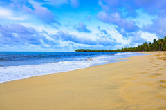 Sandy sea beach Royalty Free Stock Photo