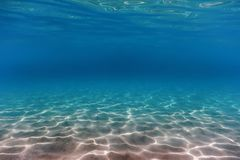 Sandy sea bottom Underwater background. Nature Background royalty free stock photo
