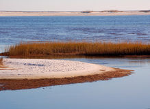 Sandy Sea Marsh. Curved sand dunes in peaceful sea marsh Stock Images