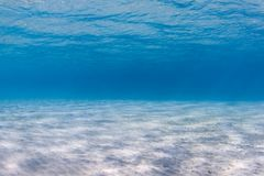 Sandy seabed. Clear blue water and a sandy seabed royalty free stock photos
