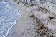 Sandy Seashore royaltyfria foton