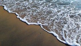 Sandy Seashore. In chavakkad, Kerala, India Royalty Free Stock Photography