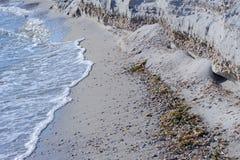 Sandy Seashore. With seashells, algae and waves Royalty Free Stock Photos