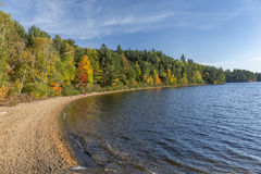 Sandy Shoreline of a Lake in Autumn - Ontario, Canada Royalty Free Stock Image