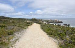 Sandy Shoreline Path. Calm Indian Ocean seascape with sandy shoreline path through lush dunes at Rottnest Island in Western Australia Royalty Free Stock Images