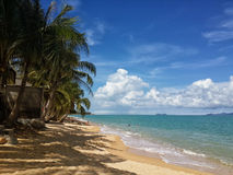The sandy shores of the azure sea. Waves and palm trees. Stock Image