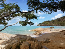 The sandy shores of the azure sea. Waves and trees. Royalty Free Stock Image