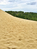 Sandy slope of the Dune of Pilat in France. Sandy slope of the Dune of Pilat. Dune du Pilat, the tallest sand dune in Europe, located in the Arcachon Bay area Royalty Free Stock Image