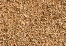 Sandy soil Stock Images