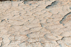 Sandy soil Royalty Free Stock Images