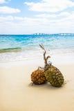 Sandy-Strände und tropisches Bild Stockfotos