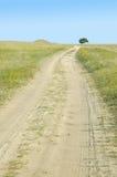 Sandy-Straße und einsamer Baum Stockfotos