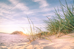 Sandy-Strand auf Sonnenuntergang lizenzfreie stockfotografie