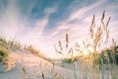 Sandy-Strand auf Sonnenuntergang Stockfotos